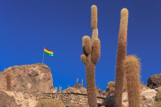 Não houve um dia que não víssemos a bandeira da Bolívia.
