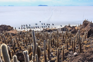 Parada obrigatória na Ilha Incahuasi.