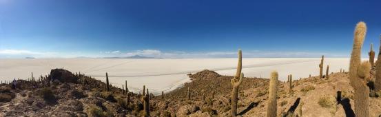 Vista do topo da ilha Incahuasi.