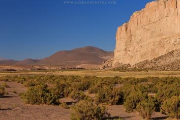 Encontramos vida no deserto