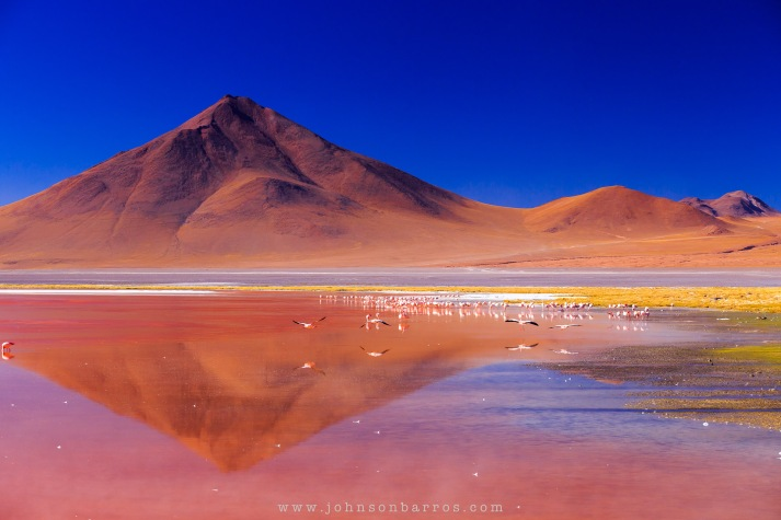 Devido à grande quantidade de algas que vivem nessa lagoa salgada, a cor vermelha tinge suas águas e servem de alimento para os flamingos.