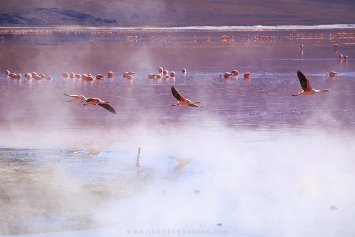 Vapores contrastam com a paisagem e com o frio.