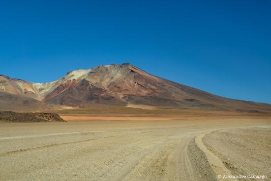 As cores povoam o deserto.