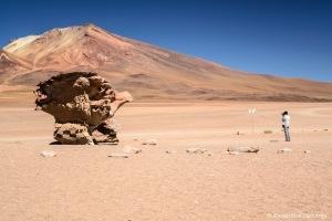 Fotógrafo sendo fotografado no Arbol de Piedra